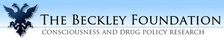 The Beckley Foundation